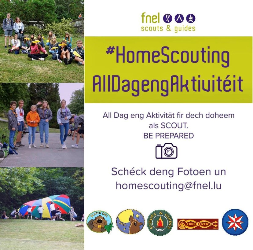 #HomeScouting